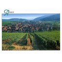 "Postcard ""Alsatian Vineyard"""