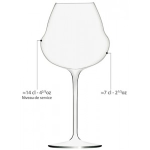 "6 Verres à Vin ""OENOMUST"" 42 cl - cristallin"