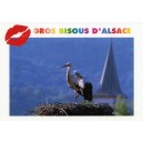 Postcard - &quot;Bisous &amp; Cigogne&quot; - (kisses &amp; stork)
