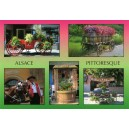 "Postcard - ""Alsace pittoresque"" - (picturesque Alsace)"