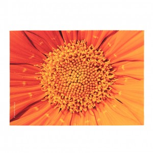 Set de table velours collection fleurs - Coeur souci orange
