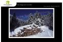 Lot de 6 cartes postales - Photos Frédéric Engel - HIVER 1