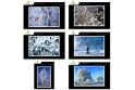 Lot de 6 cartes postales - Photos Frédéric Engel - HIVER 2