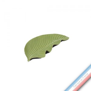 Collection SPA - Feuille 2 / Pothos Anis  - L 27,5 - l 12 cm -  Lot de 1