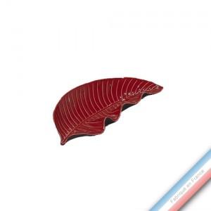 Collection SPA - Feuille 2 / Pothos Piment - L 27,5 - l 12 cm -  Lot de 1
