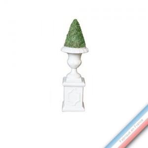 Collection CABINET CURIOSITE - Buis conique sur socle  - H. 25,5 cm -  Lot de 1