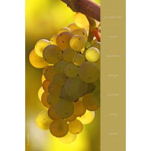 Essuie-mains en evolon collection vignes - décor 1