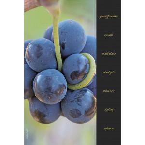 Essuie-mains en evolon collection vignes - décor 2