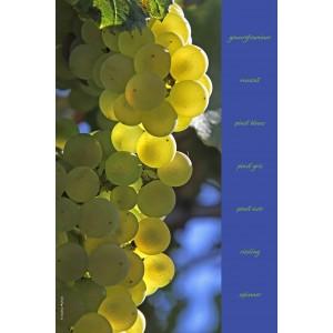 Essuie-mains en evolon collection vignes - décor 3