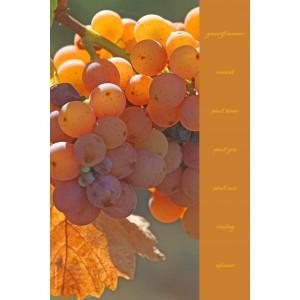 Essuie-mains en evolon collection vignes - décor 6