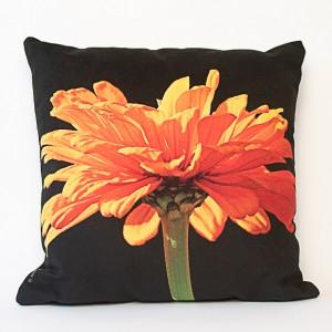 Coussin 40x40 cm collection fleurs - Zinnia orange fond noir