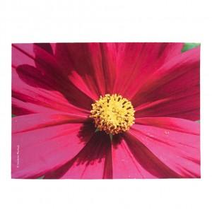 Set de table velours collection fleurs - Cosmo fuschia