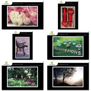 Lot de 6 cartes postales - Photos Frédéric Engel - VOEUX 1