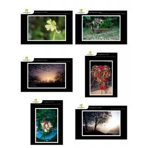 Lot de 6 cartes postales - Photos Frédéric Engel - VOEUX 3