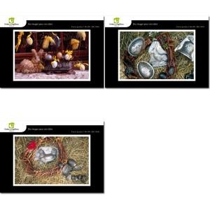 Lot de 3 cartes postales - Photos Frédéric Engel - PÂQUES