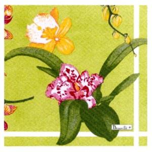 """Serviettes en papier """"Orchidées"""" fond vert"""